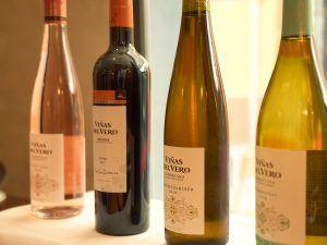 Selección de vinos de Viñas del Vero